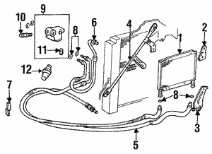 Engine Oil Cooler Gasket
