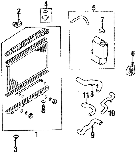 Wiring Diagram And Fuse Box