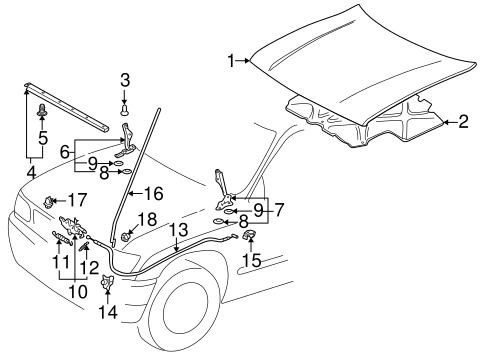 Hood Components For 1999 Toyota Tacoma