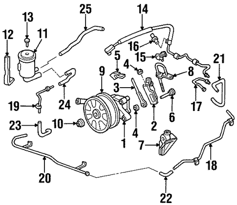 Pump Assembly, Power Steering