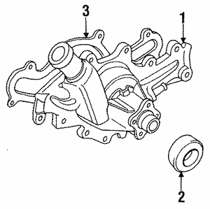 Water Pump Assembly Gasket