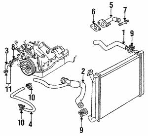 Radiator Hoses For 1992 Oldsmobile Cutlass Ciera Gm Parts Online