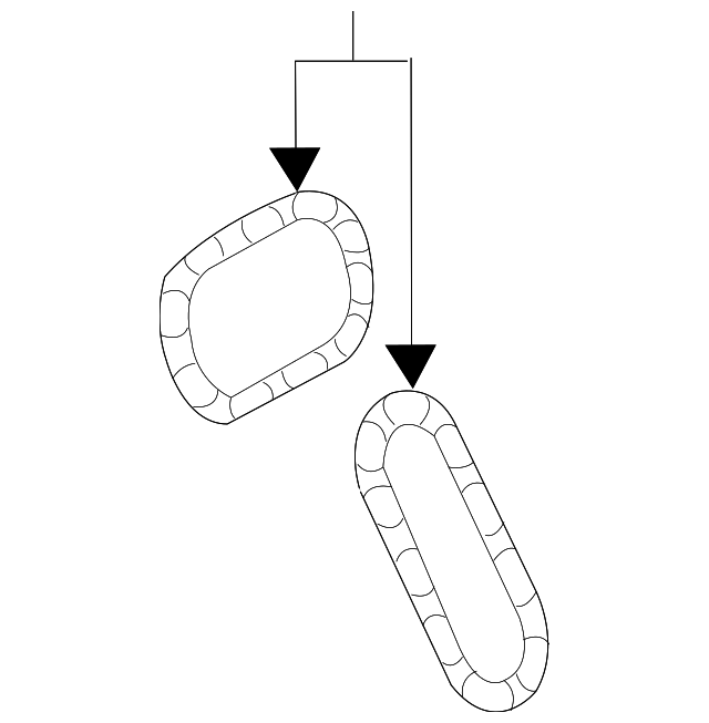 Secondary Chain