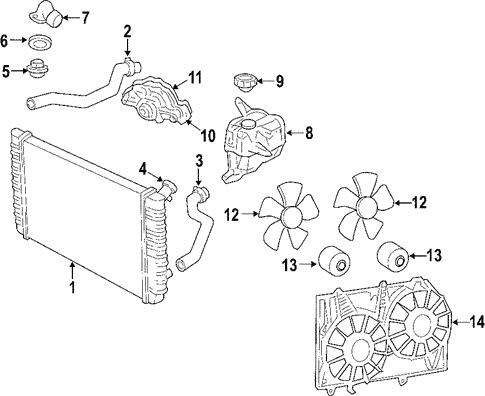 Radiator Coolant Hose-Molded Coolant Hose Lower fits 09-11 Buick Lucerne 3.9L-V6