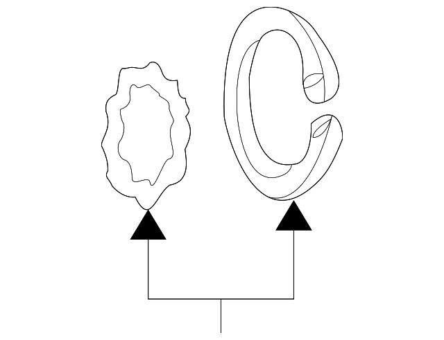 1998 2018 Mopar Clutch Snap Ring 5264454