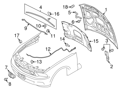 Body/Hood & Components for 2013 Ford Mustang #1