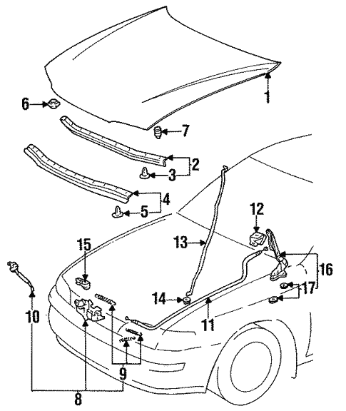 Hood Components For 1996 Toyota Corolla