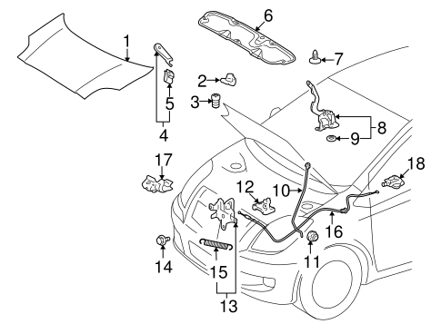 genuine oem hood components parts for 2008 toyota yaris s olathe rh parts olathetoyota com 2007 toyota yaris engine diagram Toyota Yaris 2008 Fuse Diagram