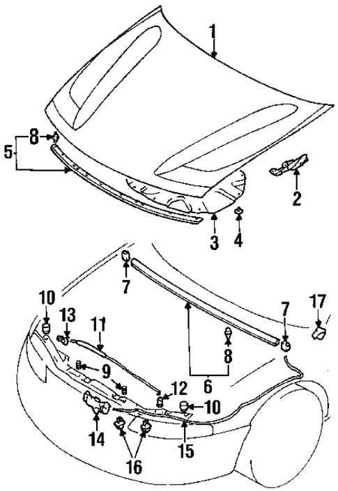 Hood Components For 2000 Chrysler Sebring