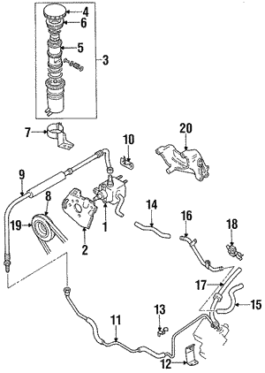 Belt, Power Steering Pump