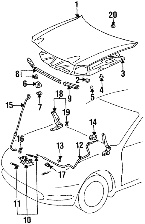 Hood Components For 1999 Toyota Celica