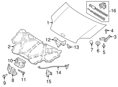 Body/Hood & Components for 2013 Ford Transit Connect #1