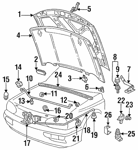 Hood & Components for 1999 Volkswagen Cabrio #1