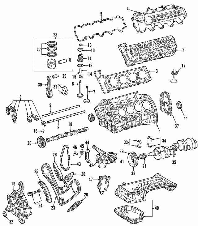Camshaft Gear - Mercedes-Benz (112-050-02-04)
