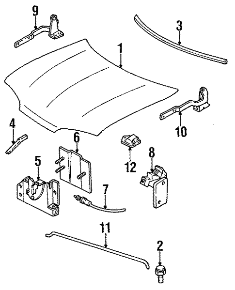 Body/Hood & Components for 1997 Ford Contour #1
