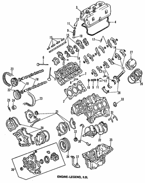 Gasket, Timing Belt (Lower)
