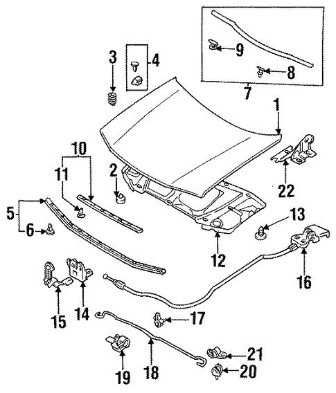 Hood & Components for 1997 Mazda Protege #0
