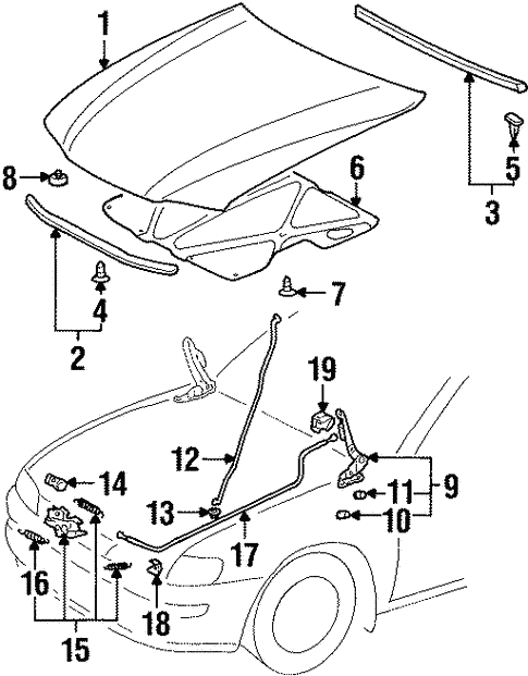 Hood Components For 2000 Chevrolet Prizm
