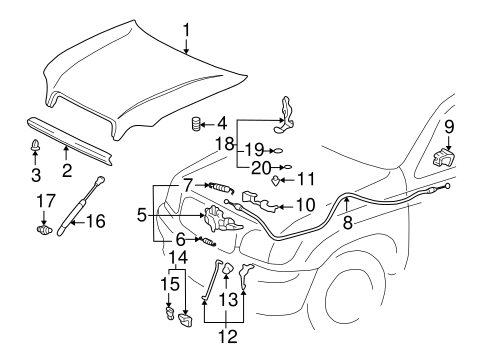 BODY/HOOD & COMPONENTS for 2001 Toyota Tundra #1