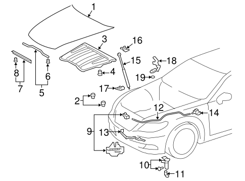 Hood Components For 2013 Lexus Ls460